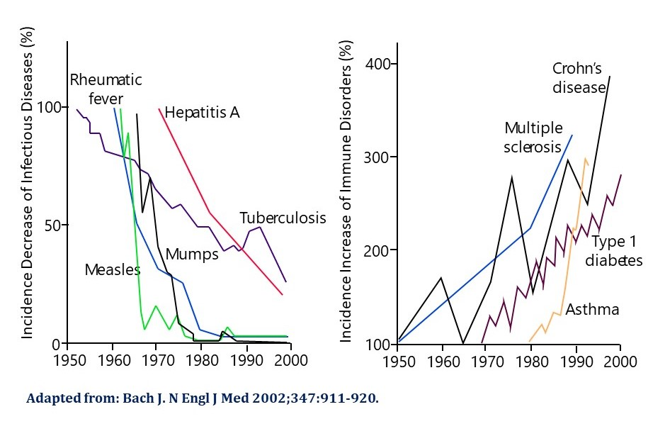 Hygeine hypothesis figure